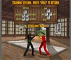 Bushido Dövüşü